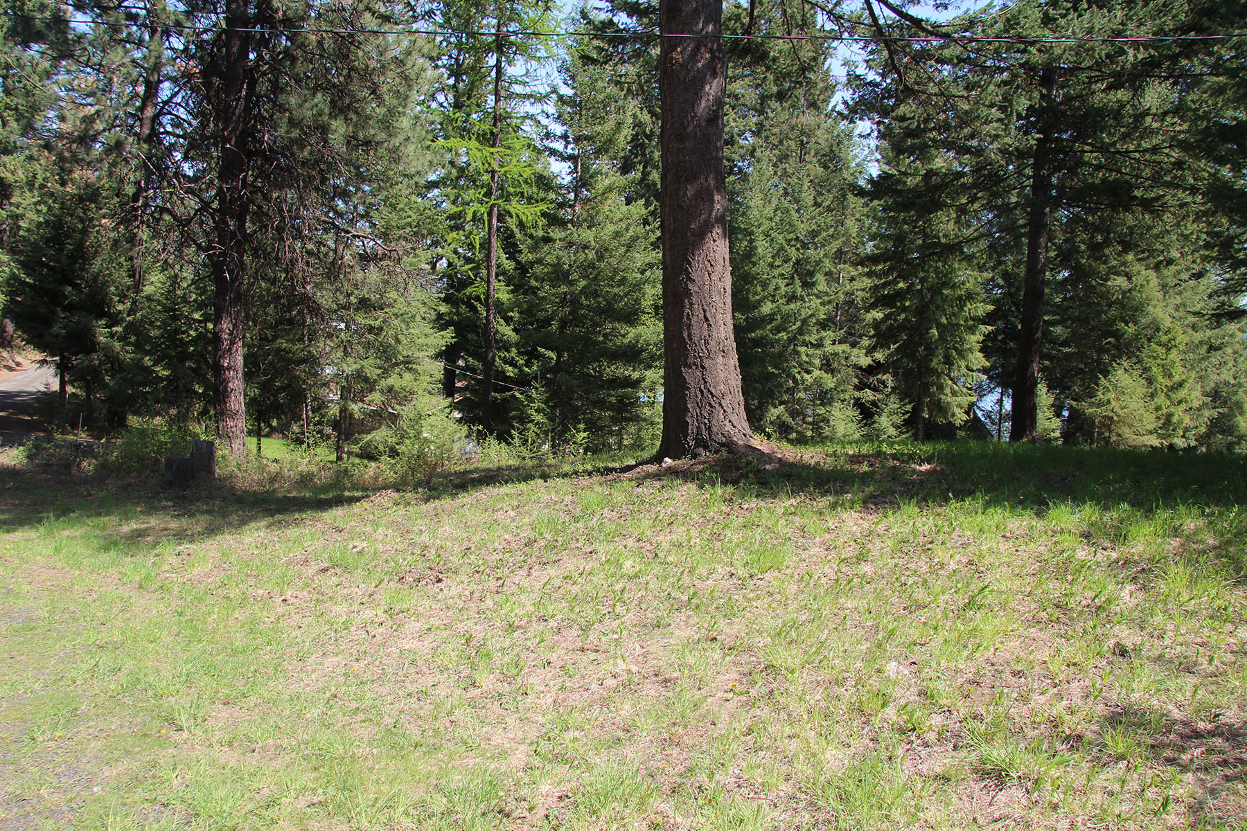 Property For Sale at Great buildable lot in Cave Bay