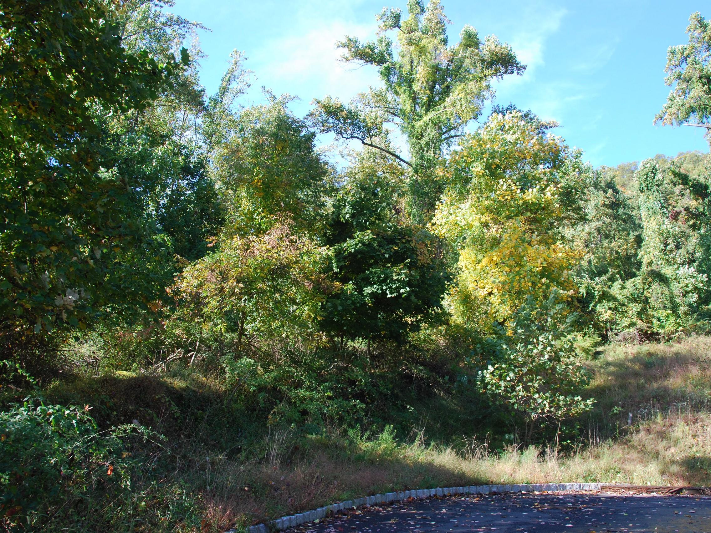 Land for Sale at 180 Degree Hudson River Views Tweed Blvd. Upper Grandview, New York 10960 United States