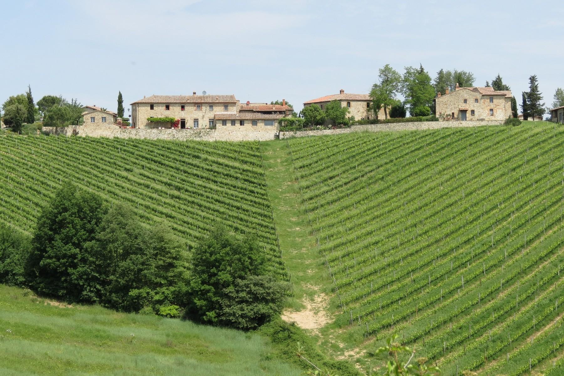 Vinhedo para Venda às Country estate in Chianti region Gaiole in Chianti Gaiole In Chianti, Siena 53013 Itália