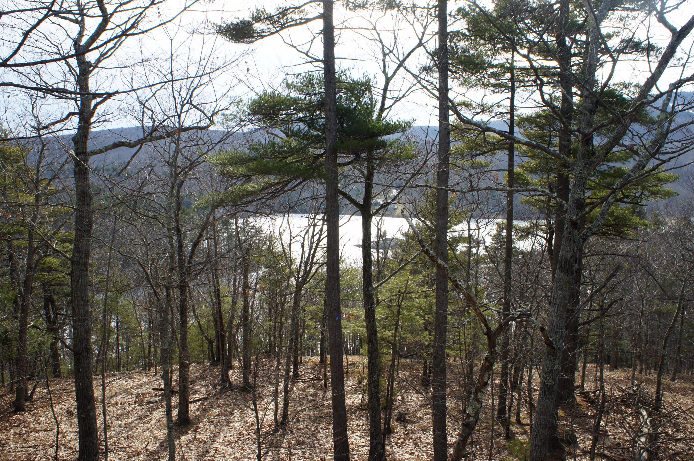 Terrain pour l Vente à Hosmer Pond Road Land 0 Hosmer Pond Road Camden, Maine, 04843 États-Unis