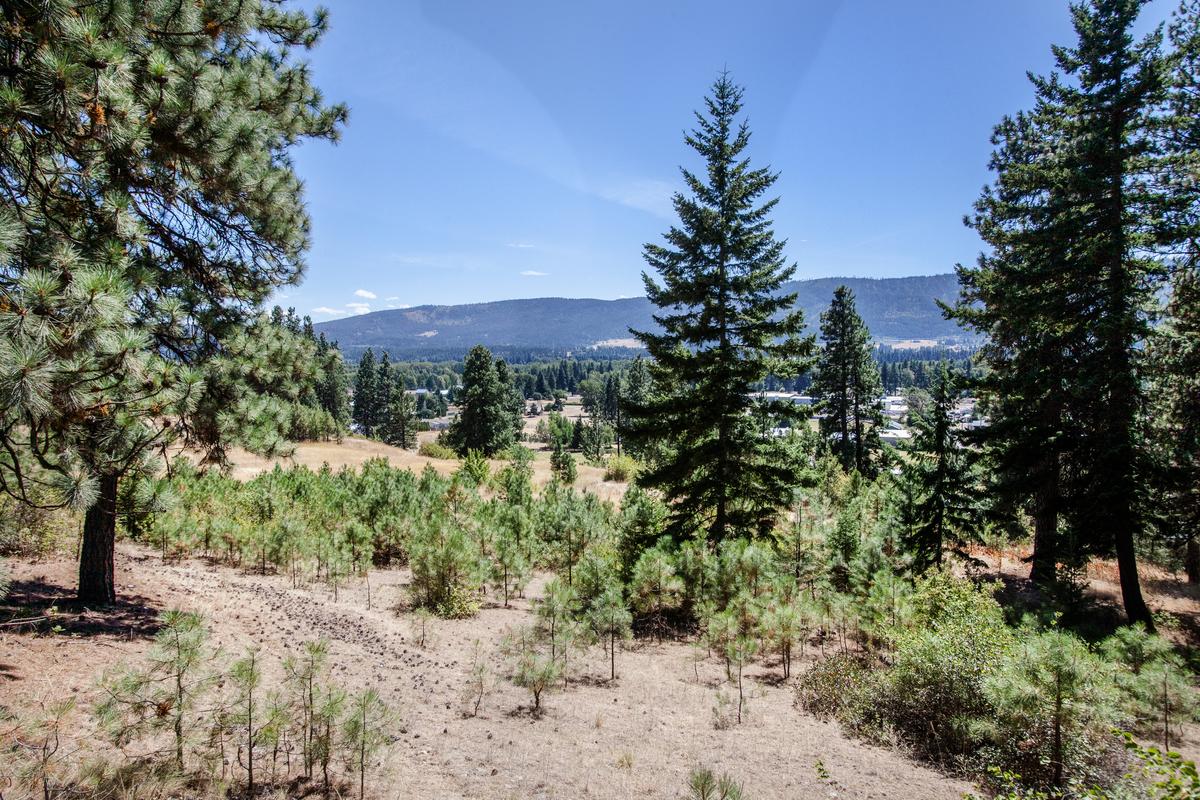 Land für Verkauf beim Cle Elum Vacant Land 000 Creekside Road Cle Elum, Washington 98922 Vereinigte Staaten