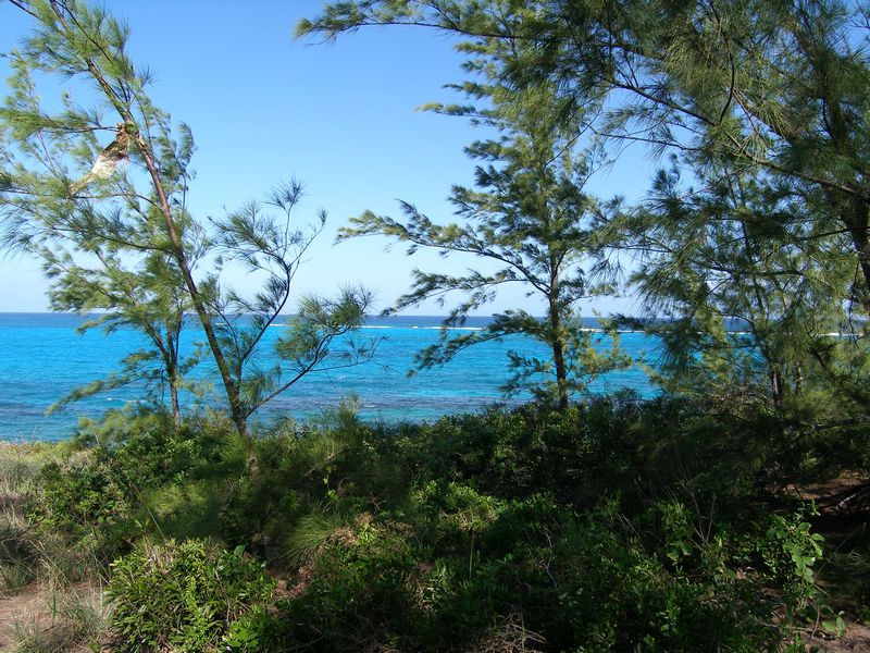 Additional photo for property listing at Waterfront Lot with Amazing Views Governors Harbour, Eleuthera Bahamas