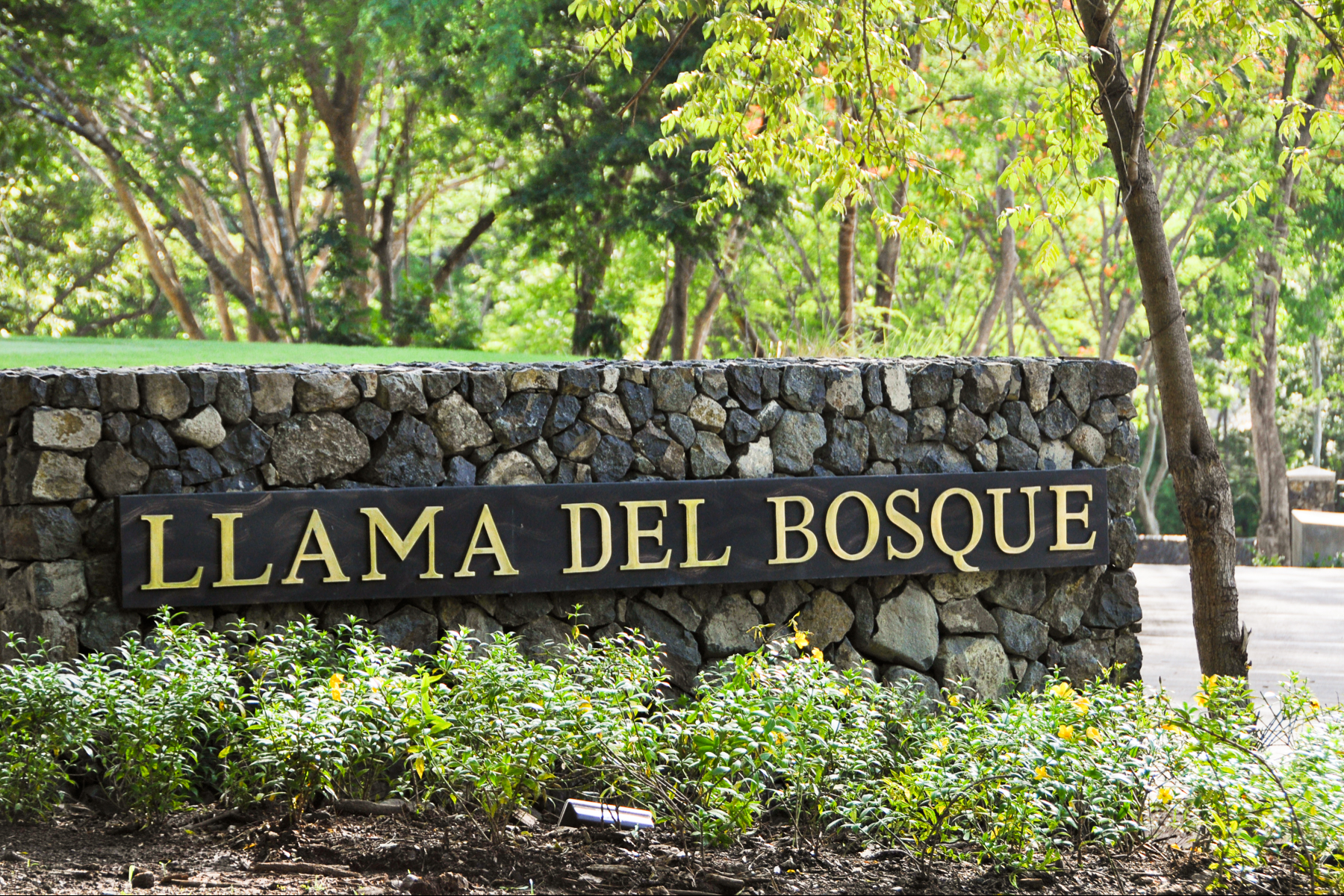 sales property at Llama del Bosque Lot #36