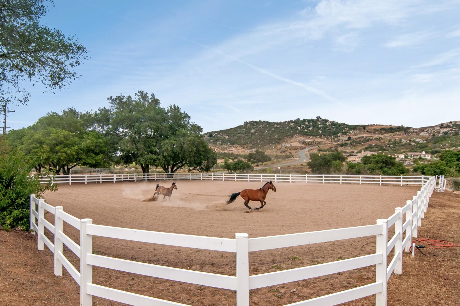 Villa per Vendita alle ore 12725 Muth Valley Road Lakeside, California 92040 Stati Uniti
