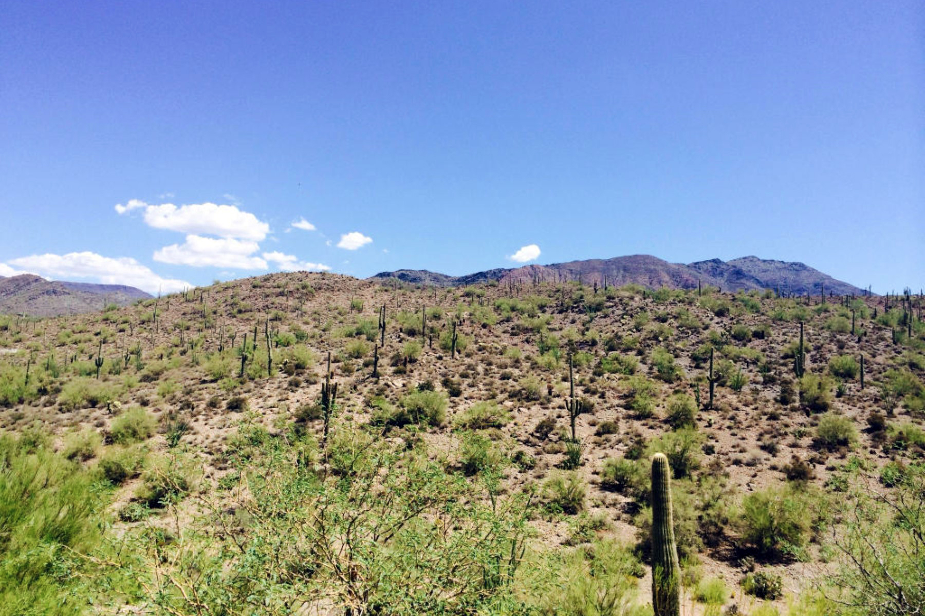 Property For Sale at Almost 15 Acres Of Beautiful Hillside & Pristine Desert In Town Of Cave Creek