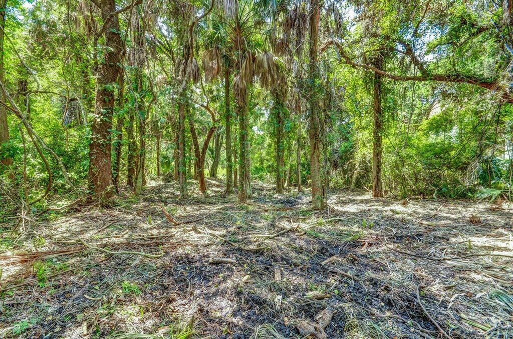 Terreno para Venda às Breathtaking Fairway Views from Half Acre Lot Lot 2 Long Point Drive Amelia Island, Florida, 32034 Estados Unidos