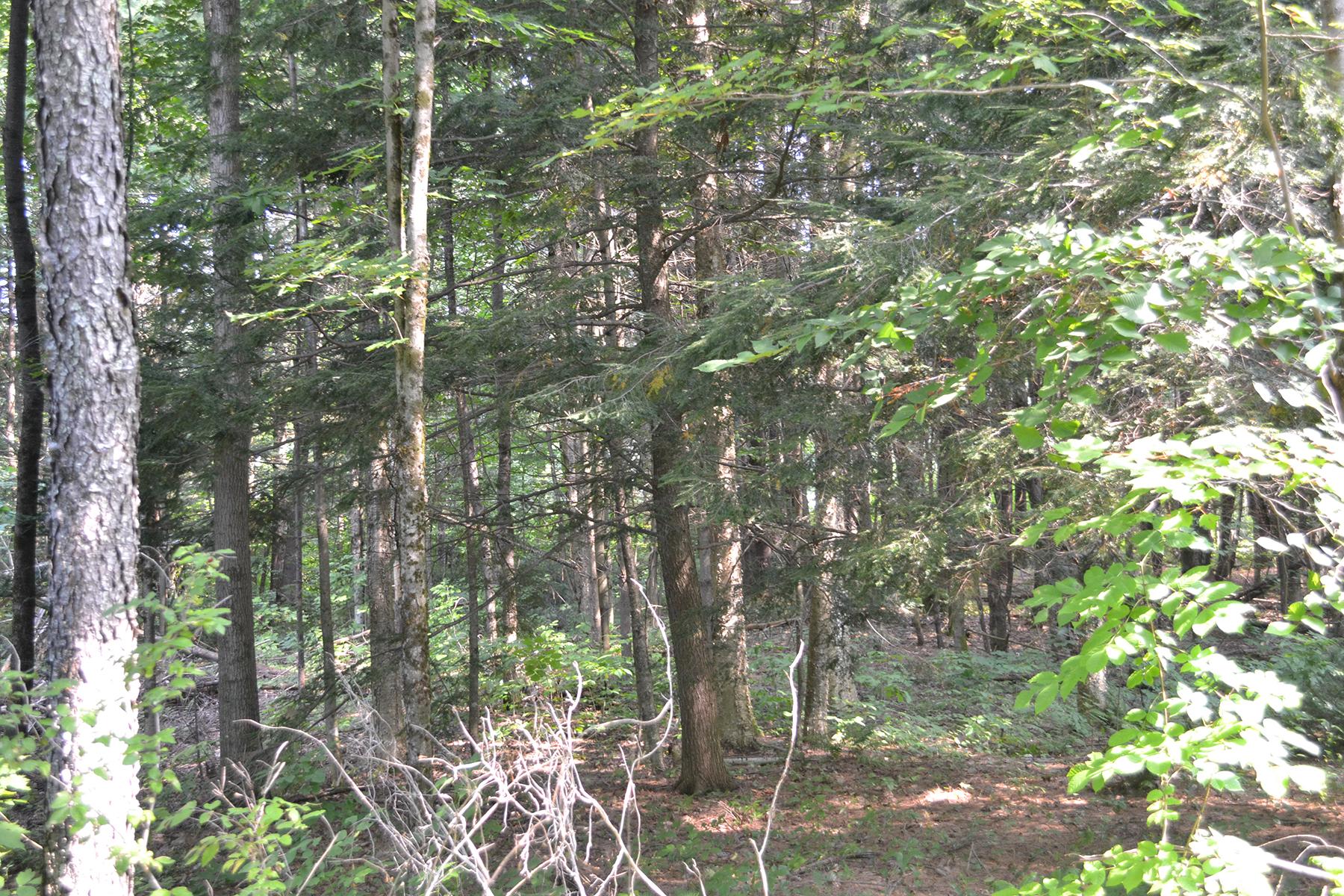 Đất đai vì Bán tại Endless Possibilities Await You 00 Hermance Road Galway, New York 12074 Hoa Kỳ