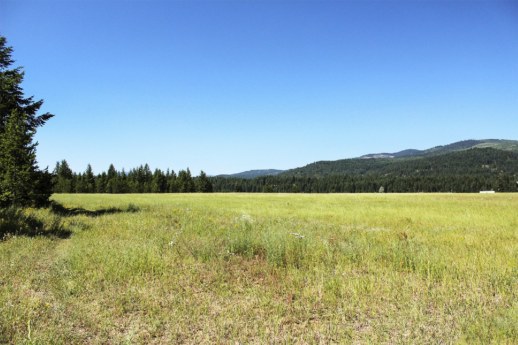 Land for Sale at 80 Beautiful Acres in Great Location! NNA Edgemere Cutoff Rd Priest River, Idaho 83856 United States