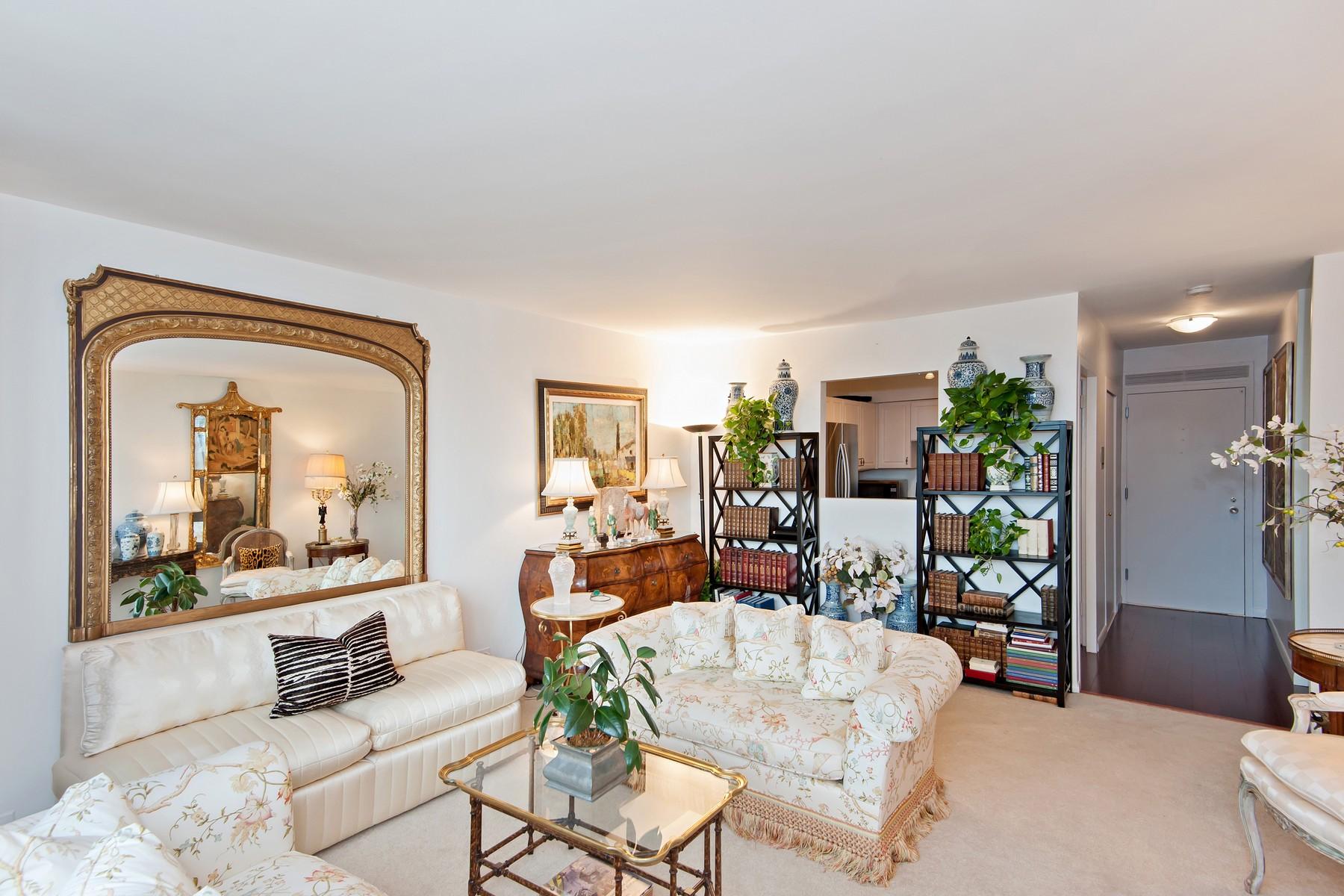 콘도미니엄 용 매매 에 North Facing One Bedroom 1550 N Lake Shore Drive Unit 3C Near North Side, Chicago, 일리노이즈, 60610 미국