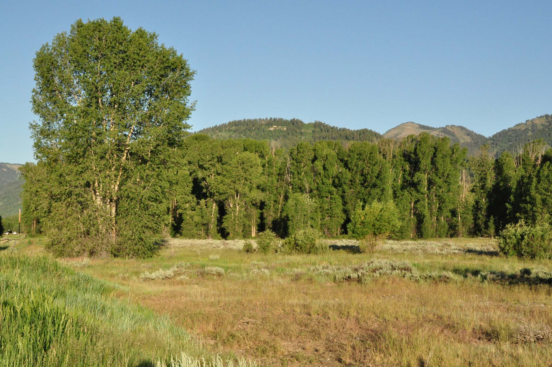 sales property at Three Acres in Wilson with Teton Views