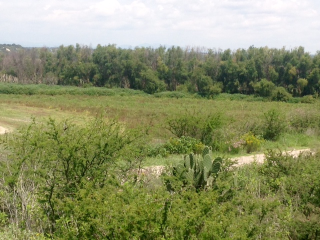 Land for Sale at La Cieniguita near Otomi Country Property, San Miguel De Allende, Guanajuato Mexico