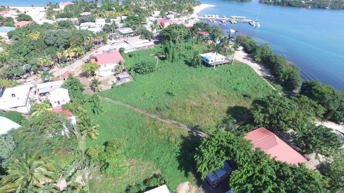 Terrain pour l Vente à LARGE BEACHFRONT ACERAGE Placencia, Stann Creek, Belize