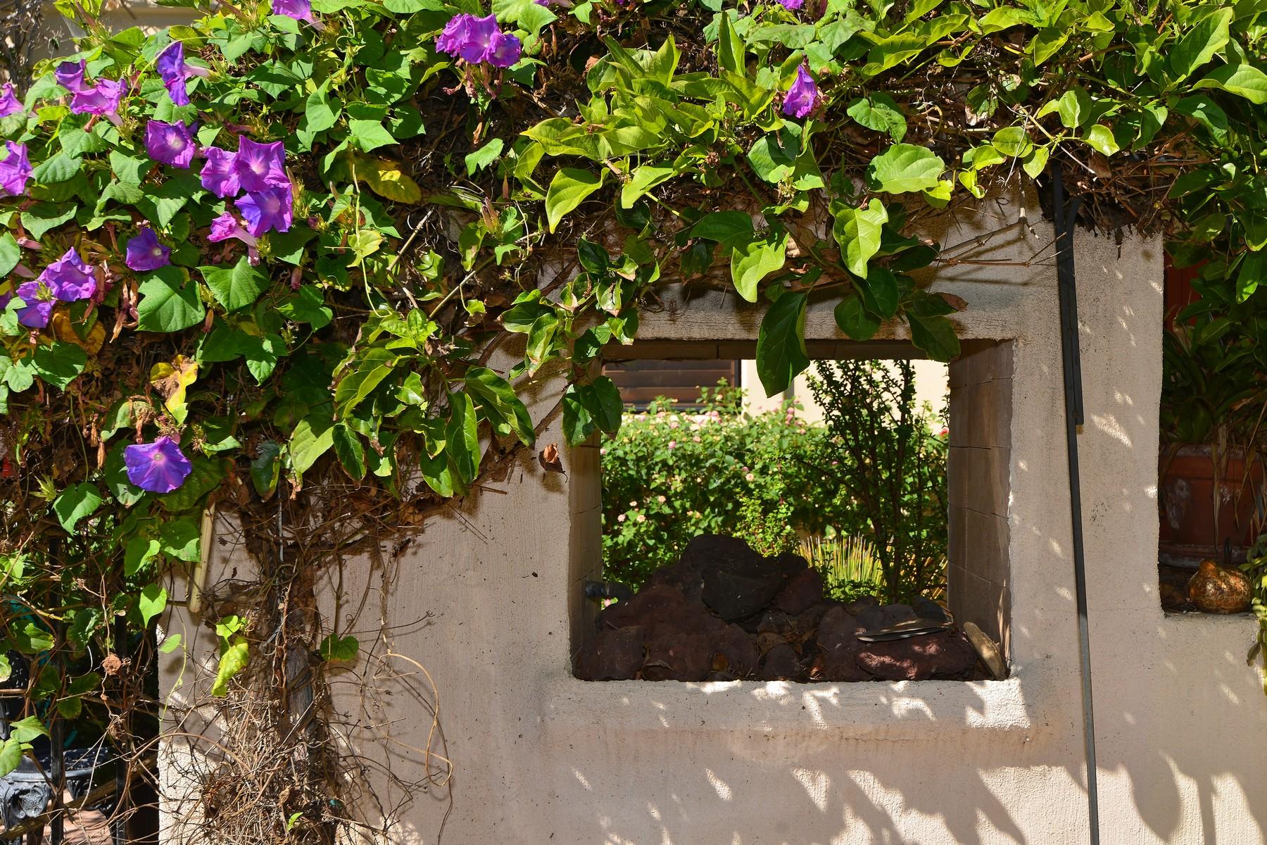 Additional photo for property listing at 634 Arenas Street  La Jolla, Californie 92037 États-Unis
