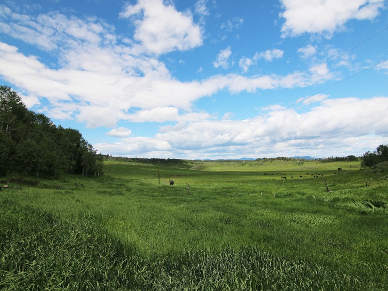 Property For Sale at 200 Acres Ranch Homesite