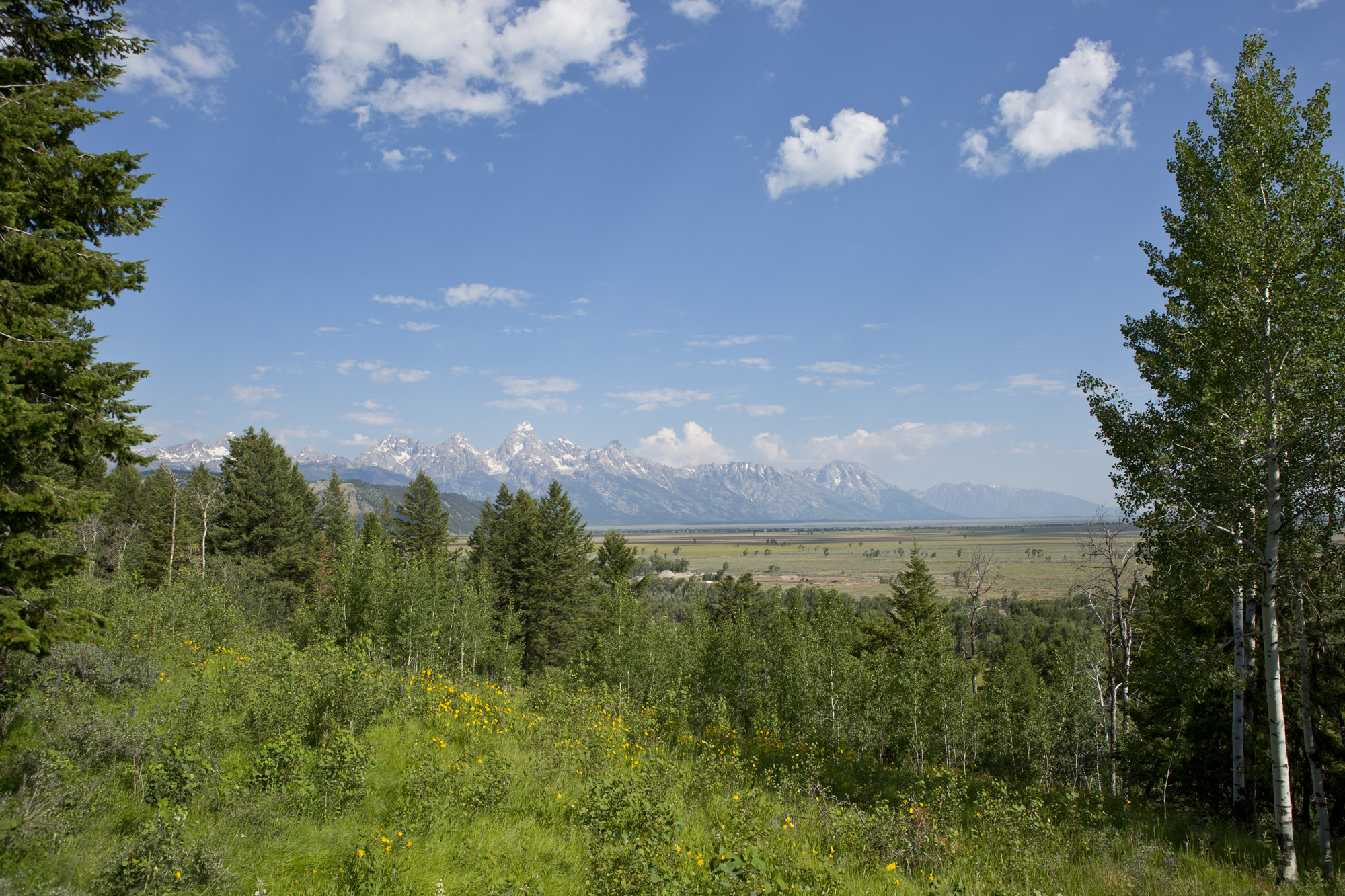Property For Sale at Highlands Rarity
