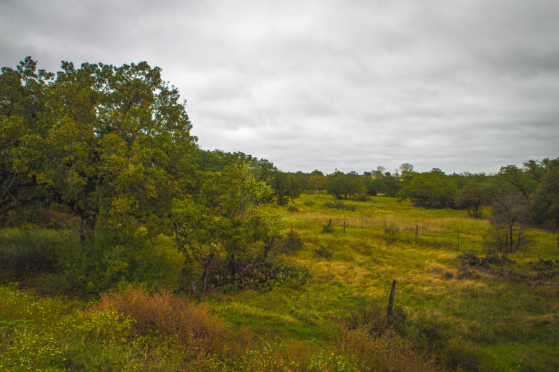 Farm / Ranch / Plantation for Sale at Santo Estate 16045 S. FM 4 #98 Santo, Texas 76472 United States