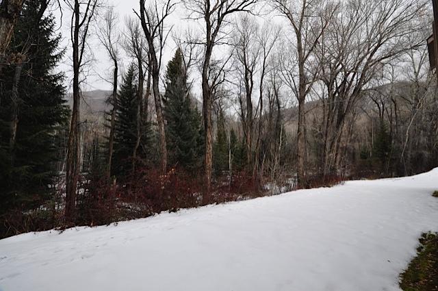 Property Of Hunter Creek