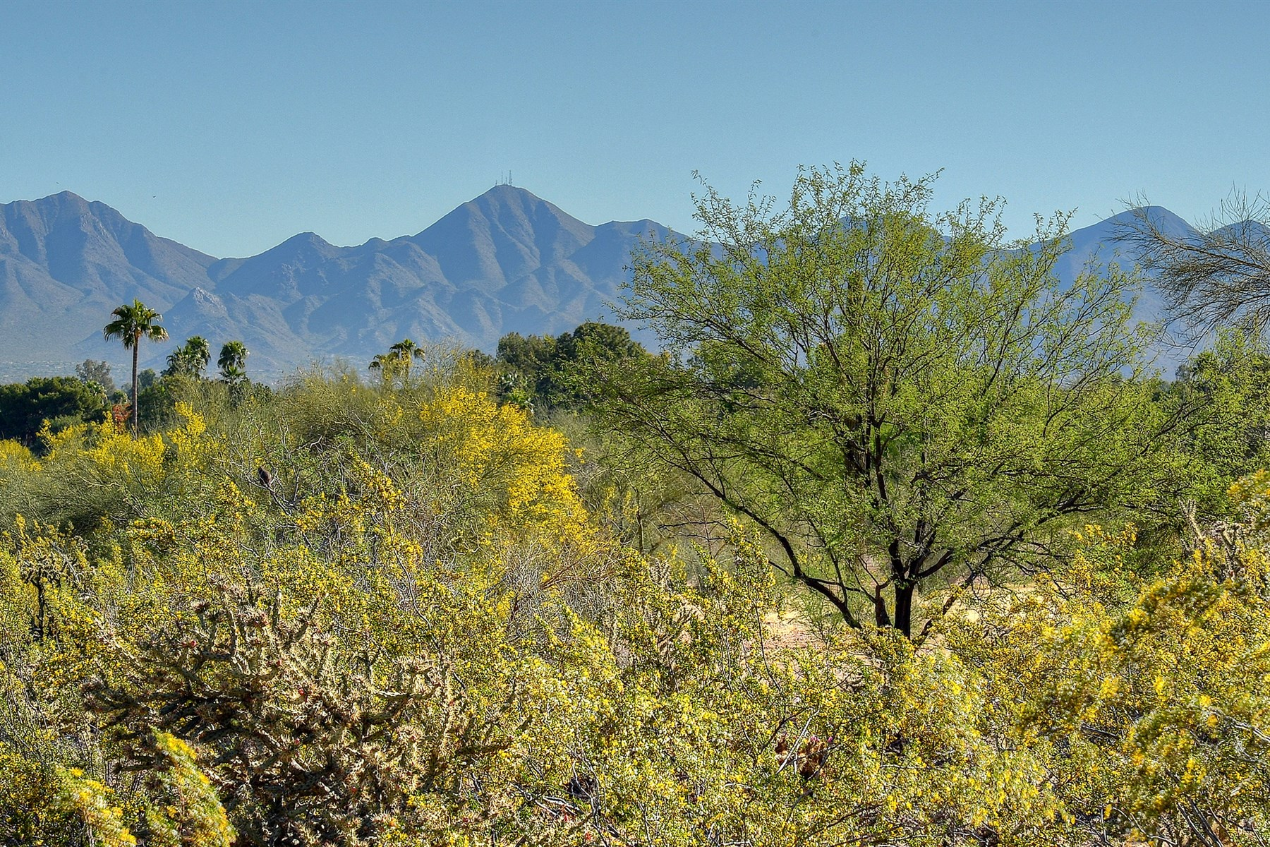 sales property at Rare 3.63 Acres in Mummy Mtn Park in Paradise Valley