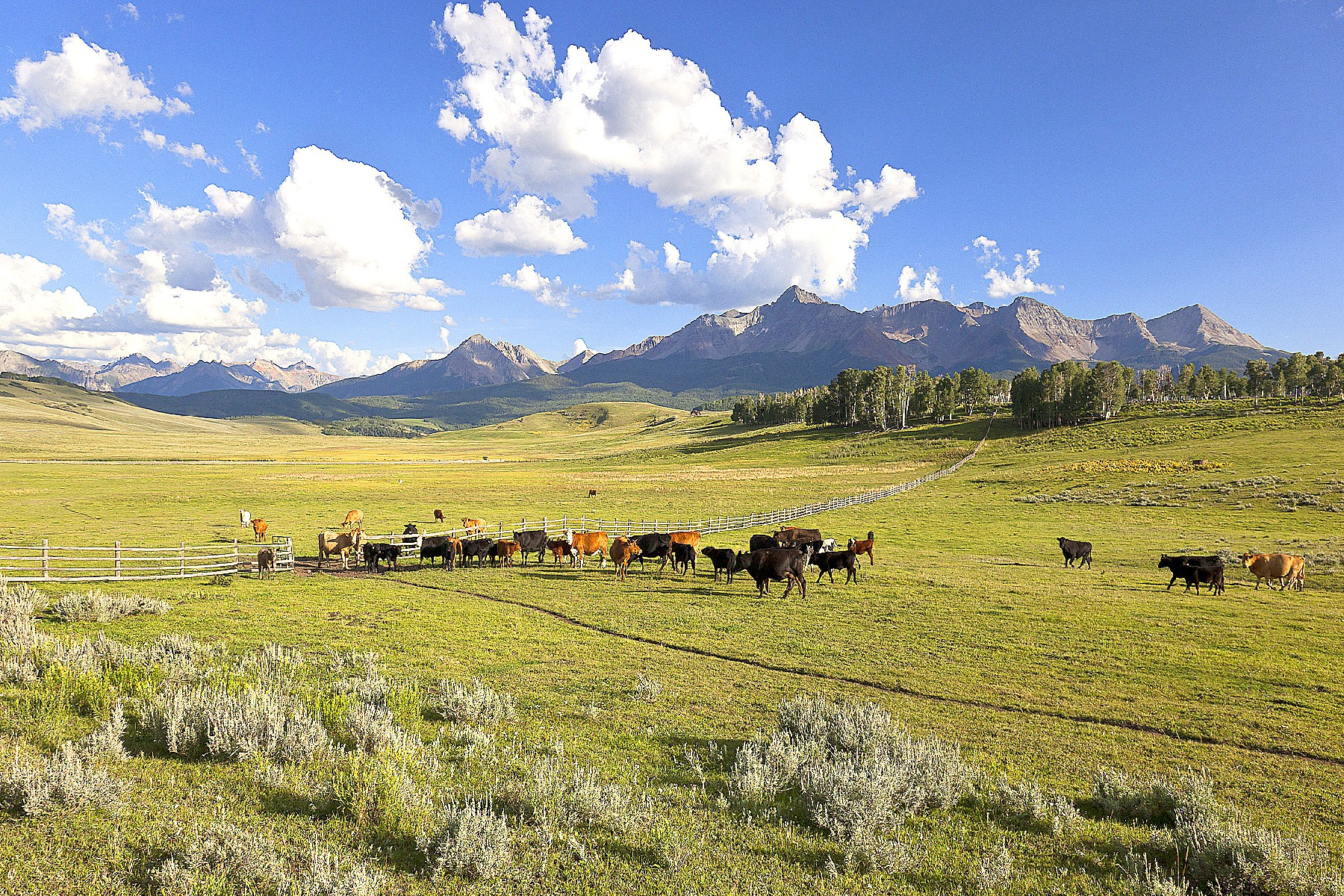 Ferme / Ranch / Plantation pour l Vente à Berman Buckskin Ranch 101 Buckskin Road Telluride, Colorado, 81435 États-Unis