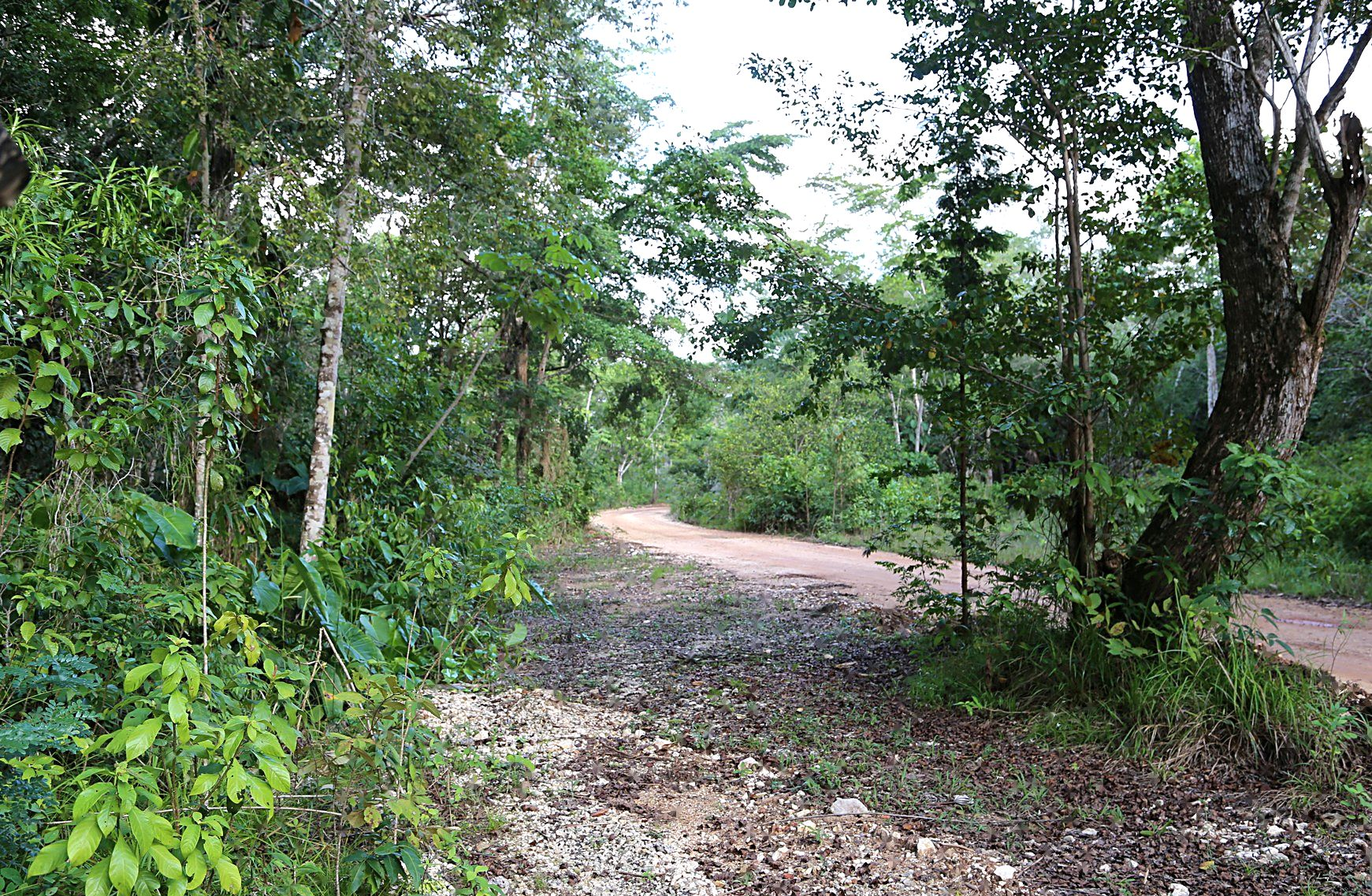 Additional photo for property listing at Big Hill Other Cities In Belize, Cities In Belize Belize