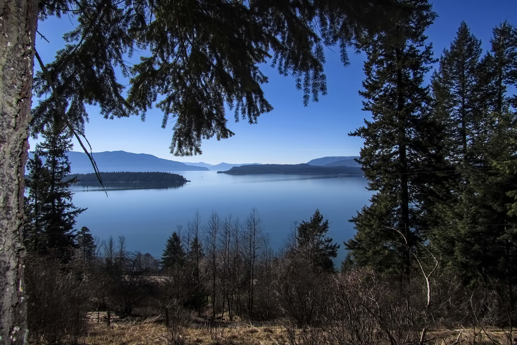 Terreno per Vendita alle ore Big Lake Pend Oreille Views! NKA Winter Ridge Road Hope, Idaho, 83836 Stati Uniti