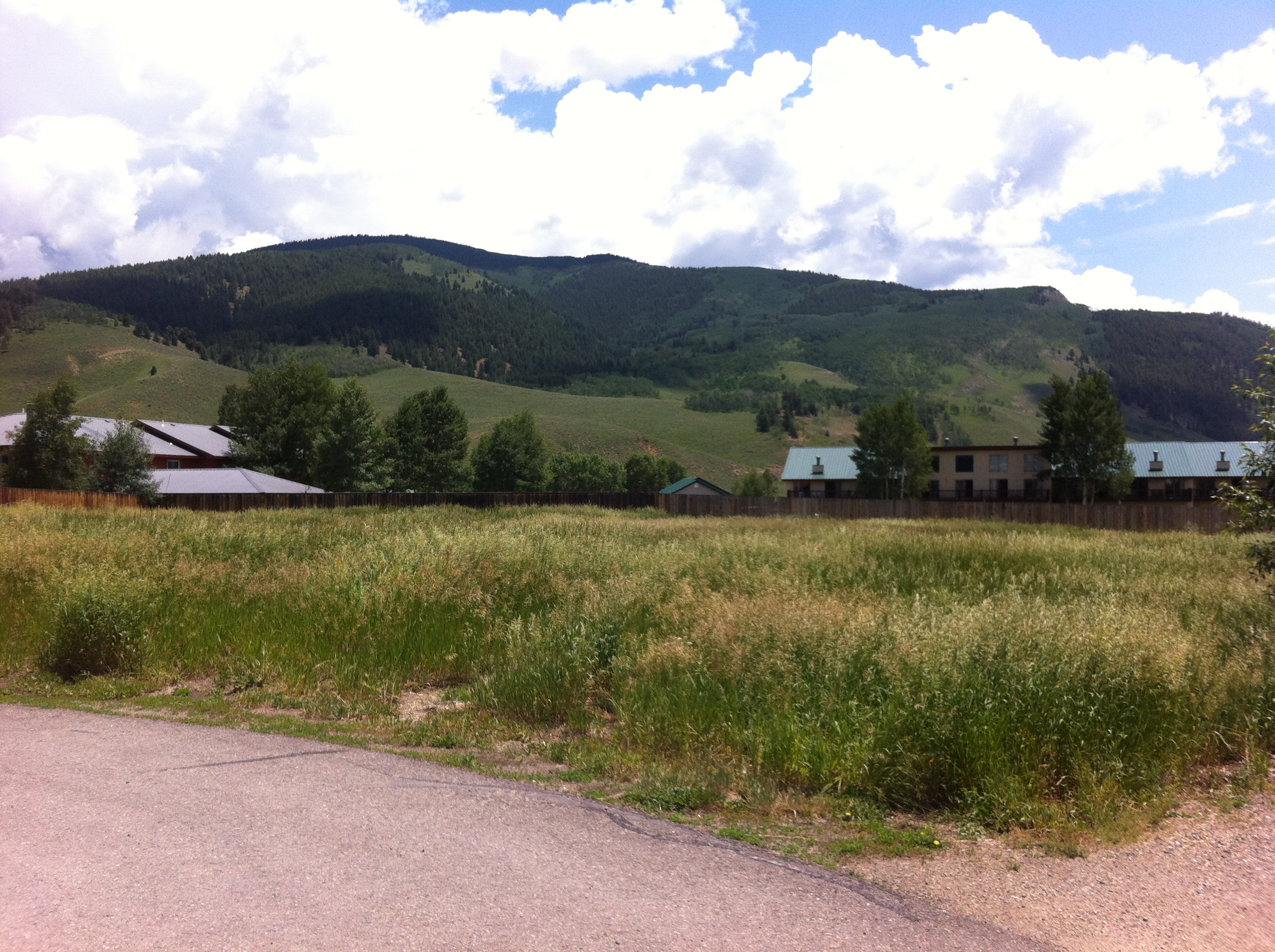 Land for Sale at 103 Endner Place Crested Butte, Colorado 81224 United States