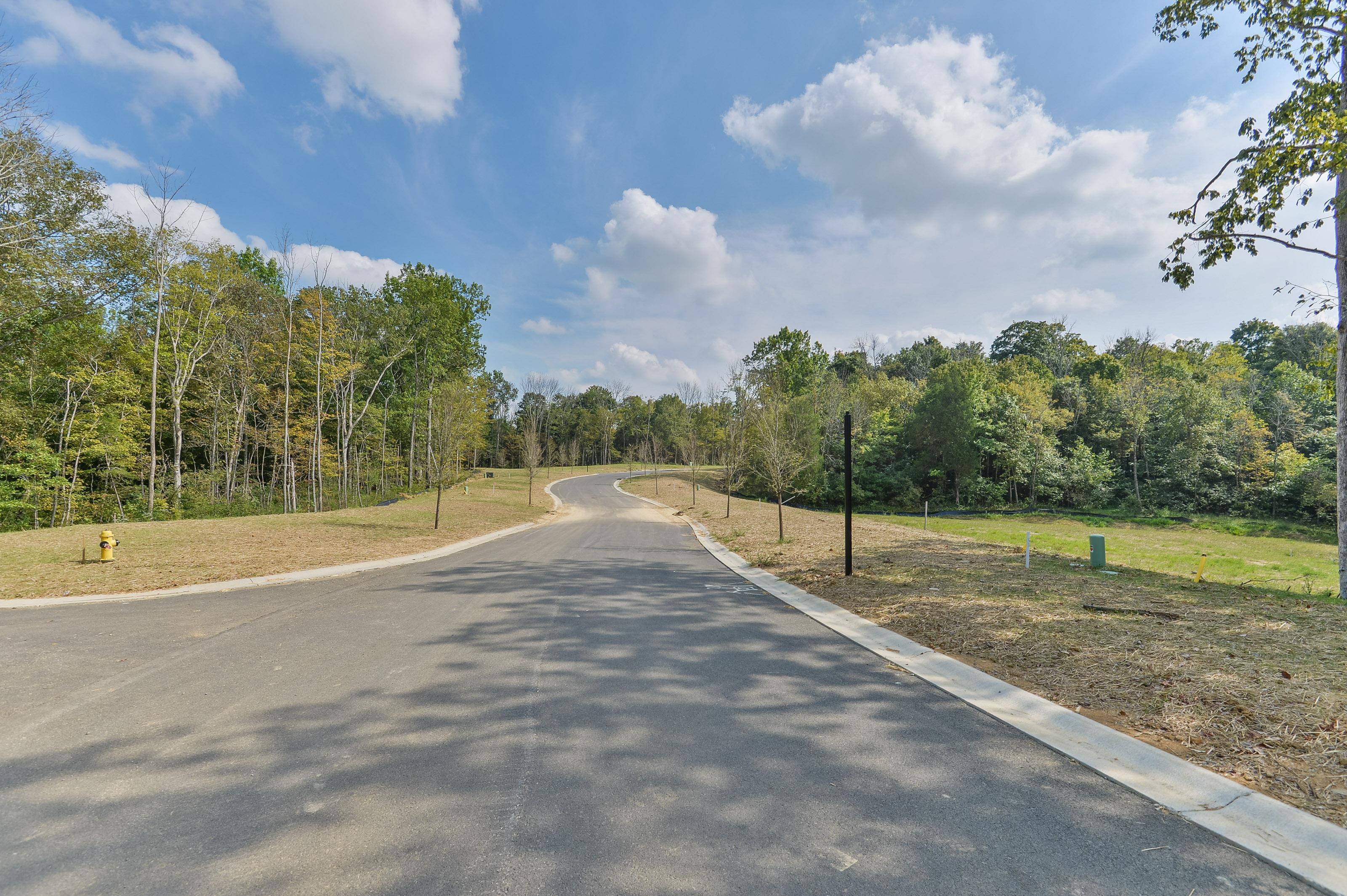 Đất đai vì Bán tại Shakes Creek Drive, Lot 245 Fisherville, Kentucky, 40023 Hoa Kỳ