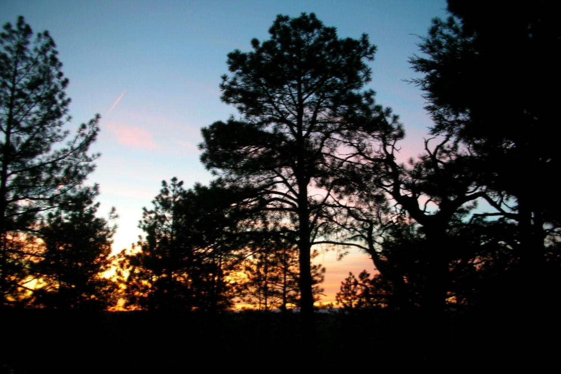 단독 가정 주택 용 매매 에 Spectacular property on the rim with stupendous views 2075 E Ridge DR Pinetop, 아리조나 85935 미국