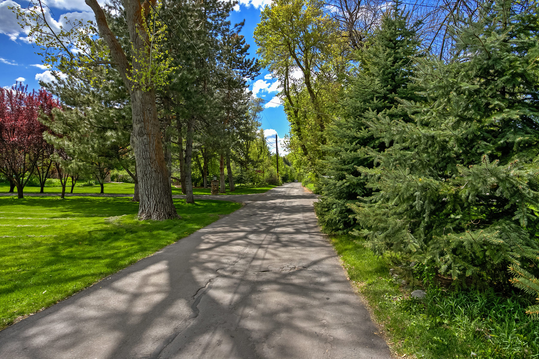 独户住宅 为 销售 在 Secluded 1 Acre Property 1967 E Forest Bend Dr 卡顿高地, 犹他州, 84121 美国