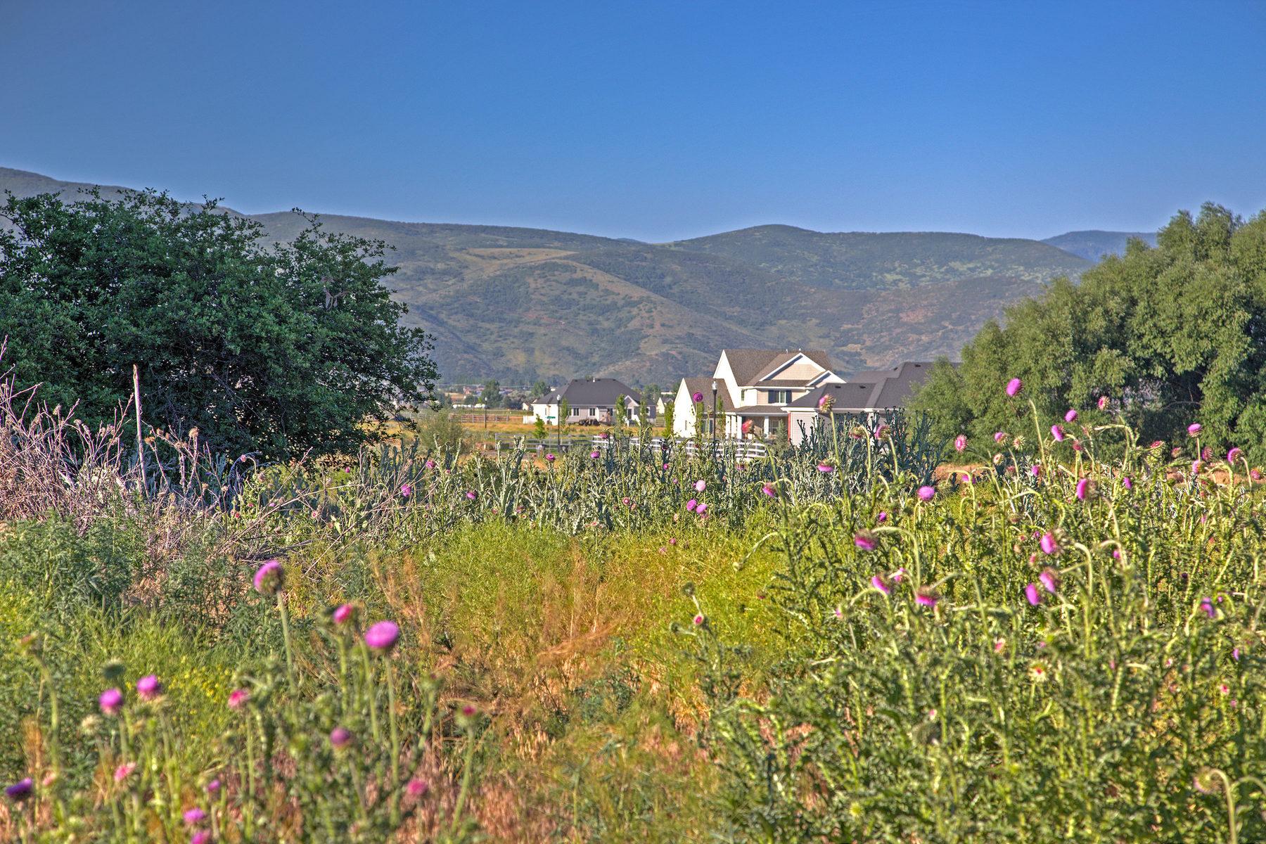 Terrain pour l Vente à Delightful Building Sites at Beaufontaine 1676 East 70 South Lot 41 Heber City, Utah 84032 États-Unis