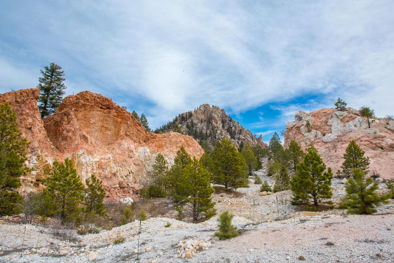 Terreno per Vendita alle ore Raleigh Peak Rd Sedalia, Colorado, 80135 Stati Uniti