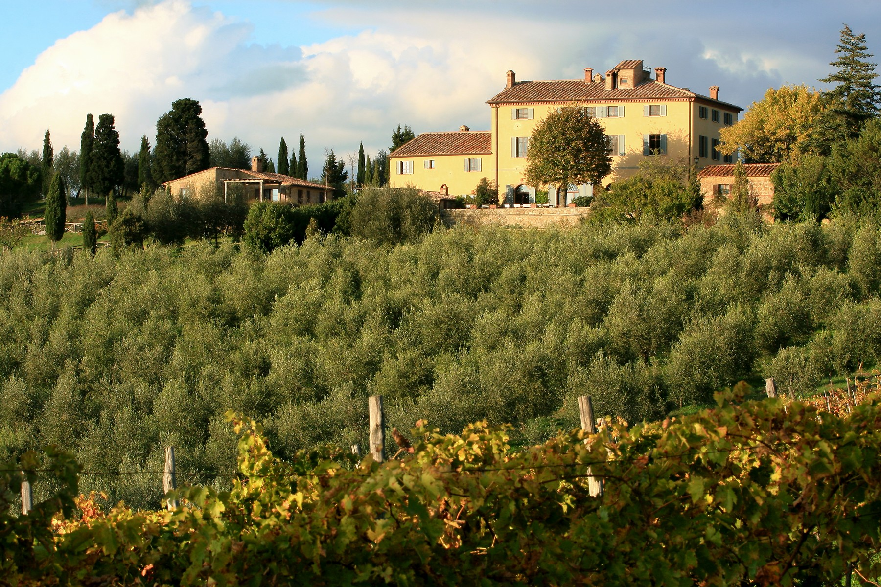 단독 가정 주택 용 매매 에 Spectacular estate with vineyard near Pienza Montichiello Pienza, Siena 53026 이탈리아
