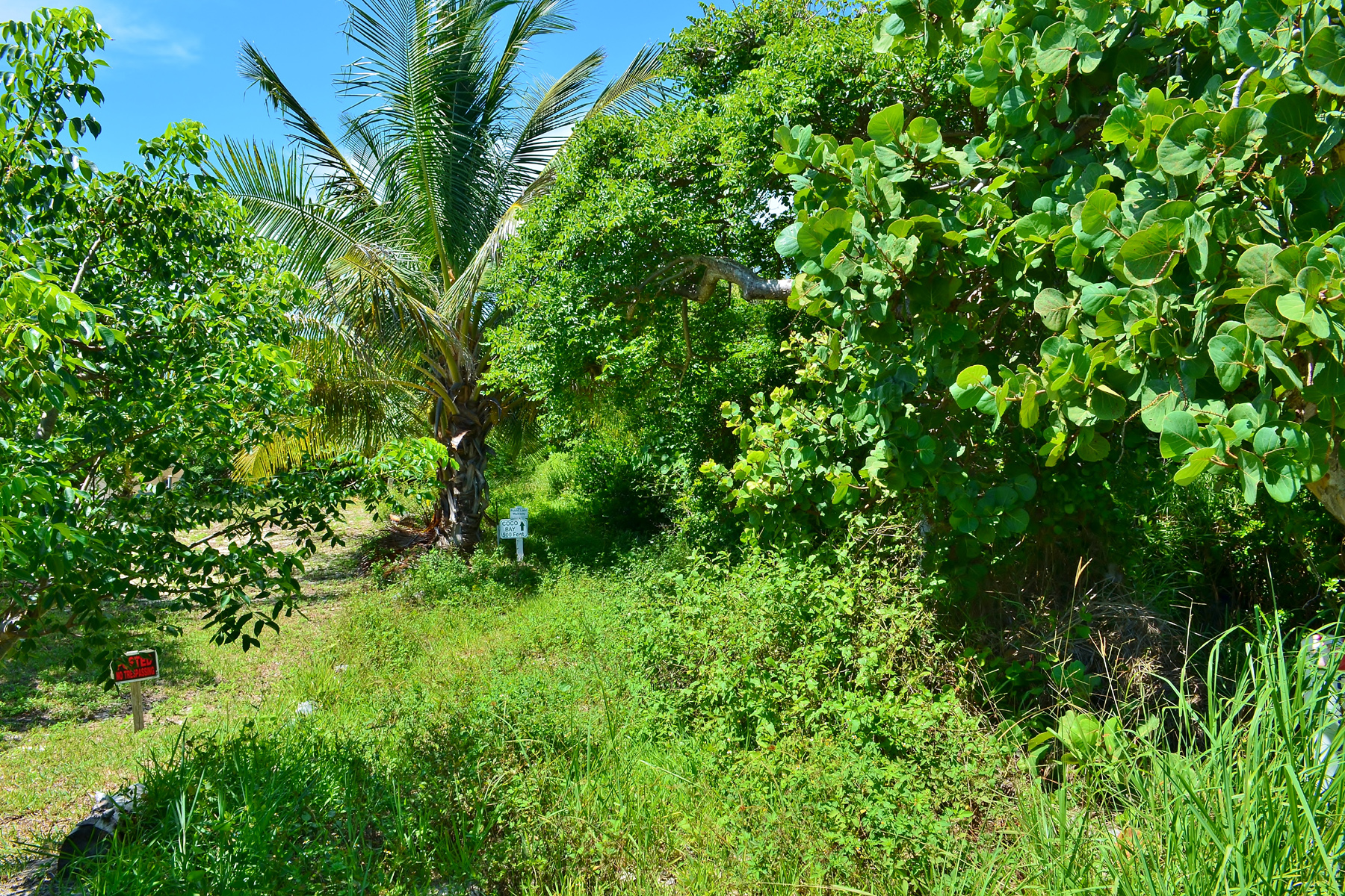 Additional photo for property listing at Sunrise Beach Green Turtle Cay, Abaco Bahamas
