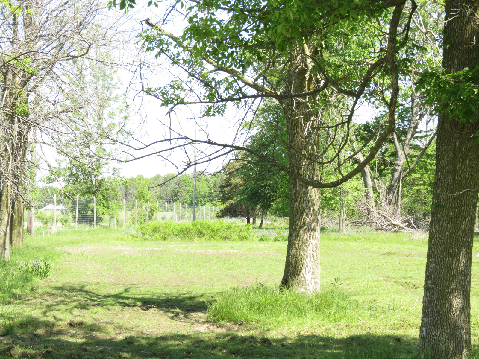 Property For Sale at Lincoln Township
