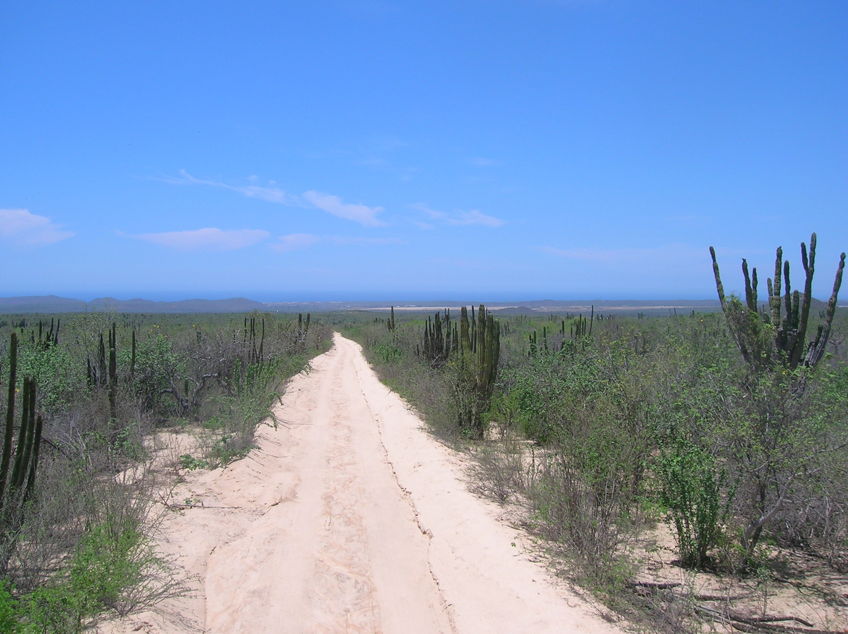 Property For Sale at Rancho Mano Pintada