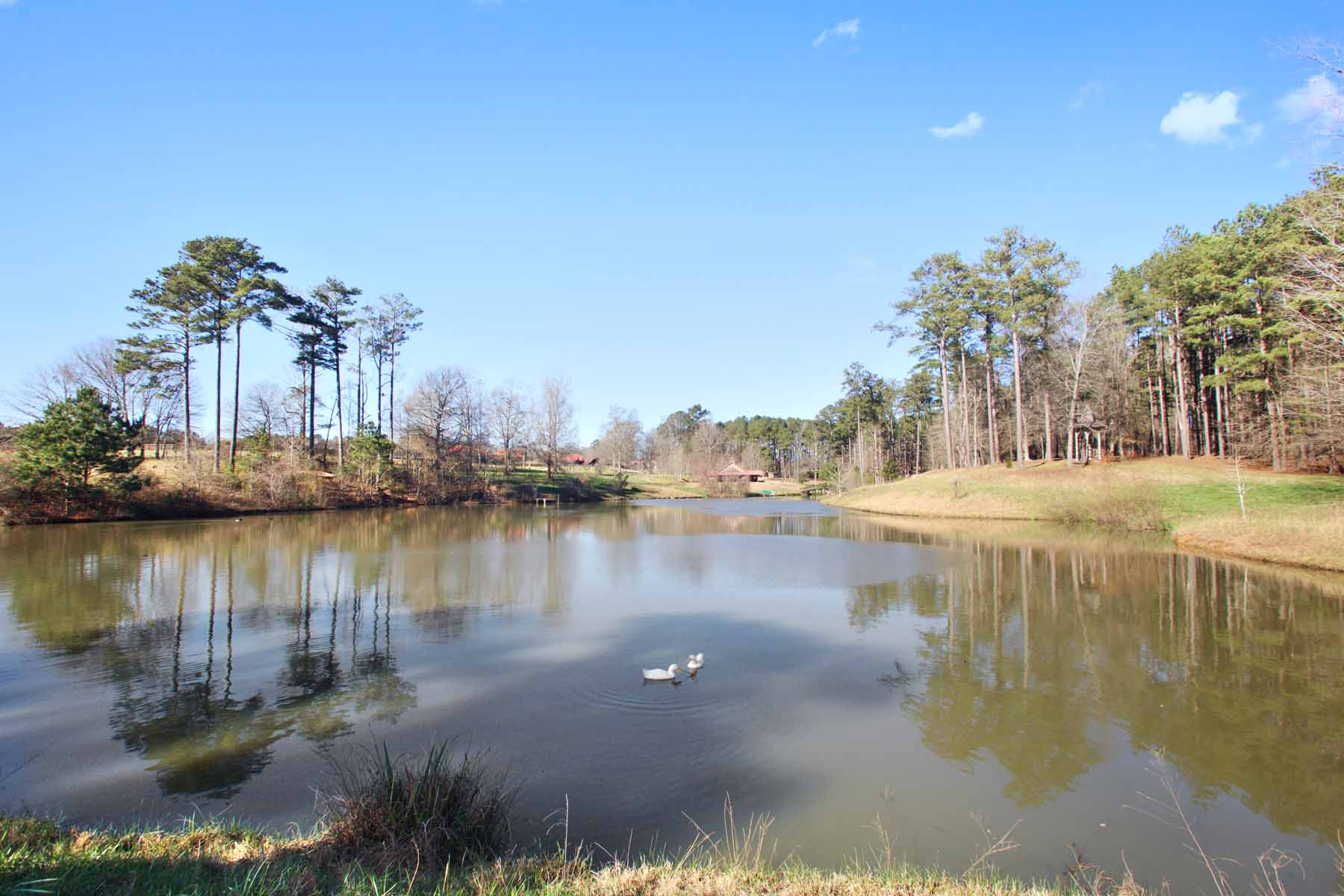 Additional photo for property listing at Wooded Lot in Serenbe Community 10703 Serenbe Lane Lot 159 Chattahoochee Hills, Georgien 30268 Usa