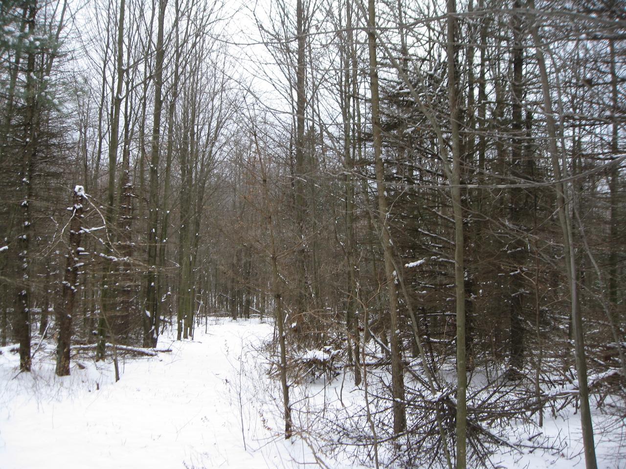 土地 为 销售 在 62nd A 62nd Street 霍德兰, 密歇根州, 49423 美国