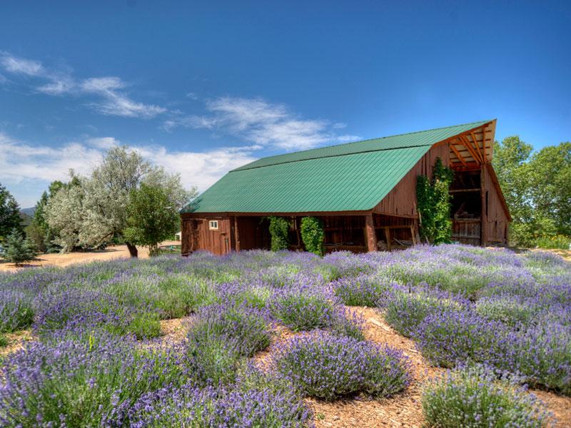 Property Of Rancho Escalante