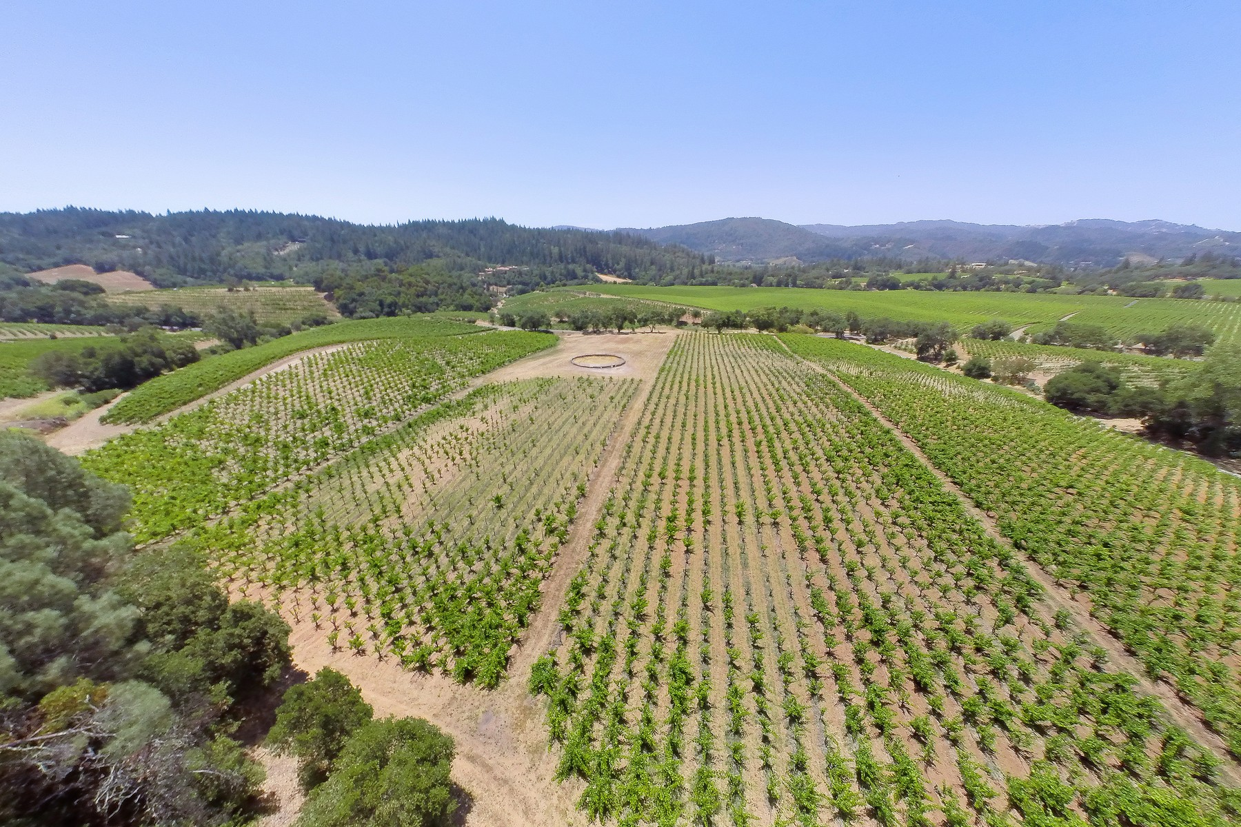 Farm / Ranch / Plantation for Sale at Carreras Ranch 22700 Walling Rd Geyserville, California 95441 United States