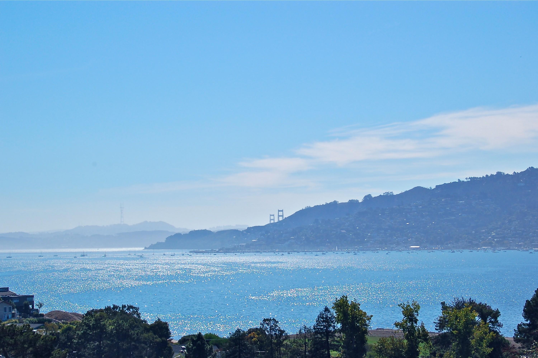 Maison unifamiliale pour l Vente à San Francisco View & Approved Expansion Plans 14 Sutter Court Tiburon, Californie 94920 États-Unis