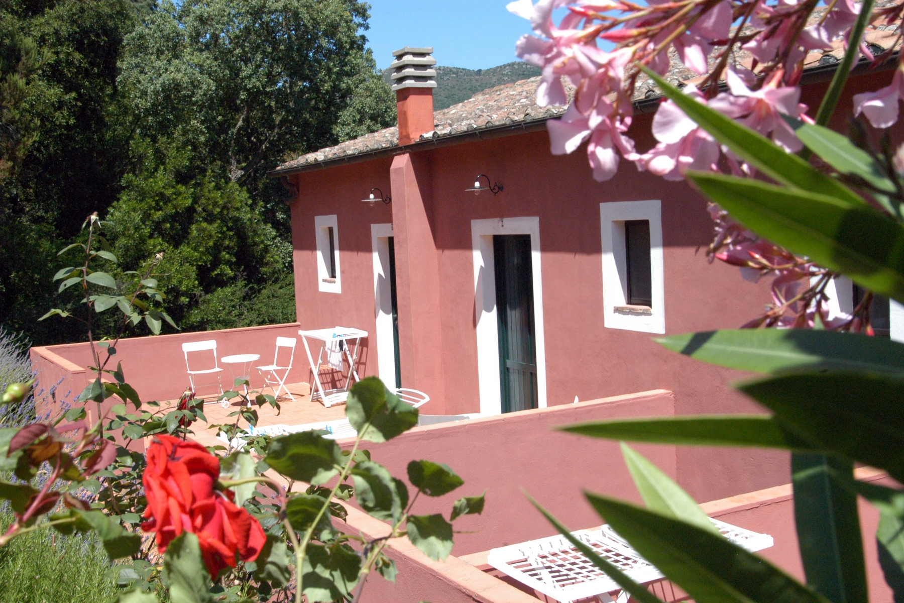 Additional photo for property listing at Panoramic farmhouse with winery Rio Marina Rio Marina, Livorno 57038 Italie