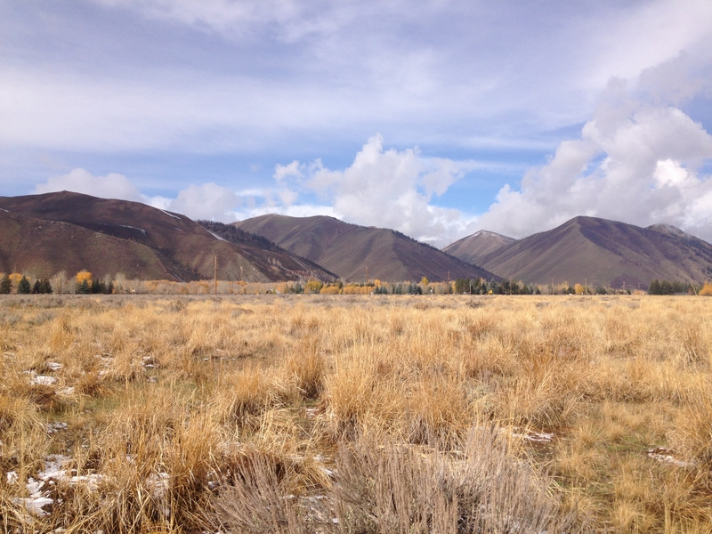 Additional photo for property listing at Unique Mid-Valley Offering 9 Ohio Gulch Road Hailey, Idaho 83333 États-Unis