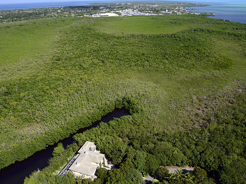 土地 为 销售 在 Vacant Lot at Ocean Reef 30 Baker Road Ocean Reef Community, Key Largo, 佛罗里达州 33037 美国