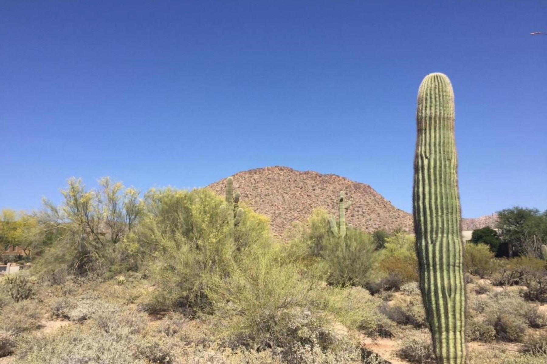sales property at Spectacular custom homesite in Desert Highlands