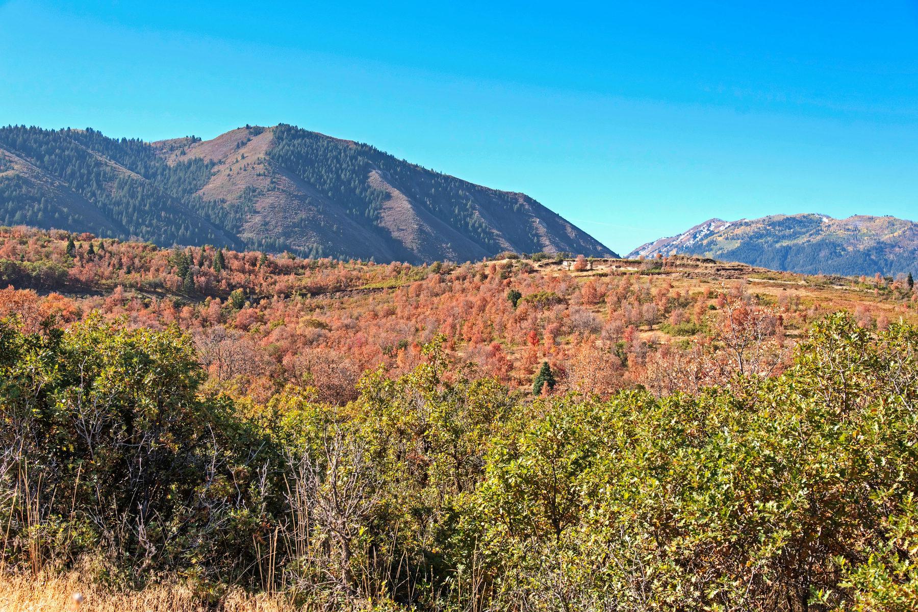토지 용 매매 에 Prime Lot in Summit Creek 826 S Summit Creek Dr Lot 44 Woodland Hills, 유타, 84653 미국