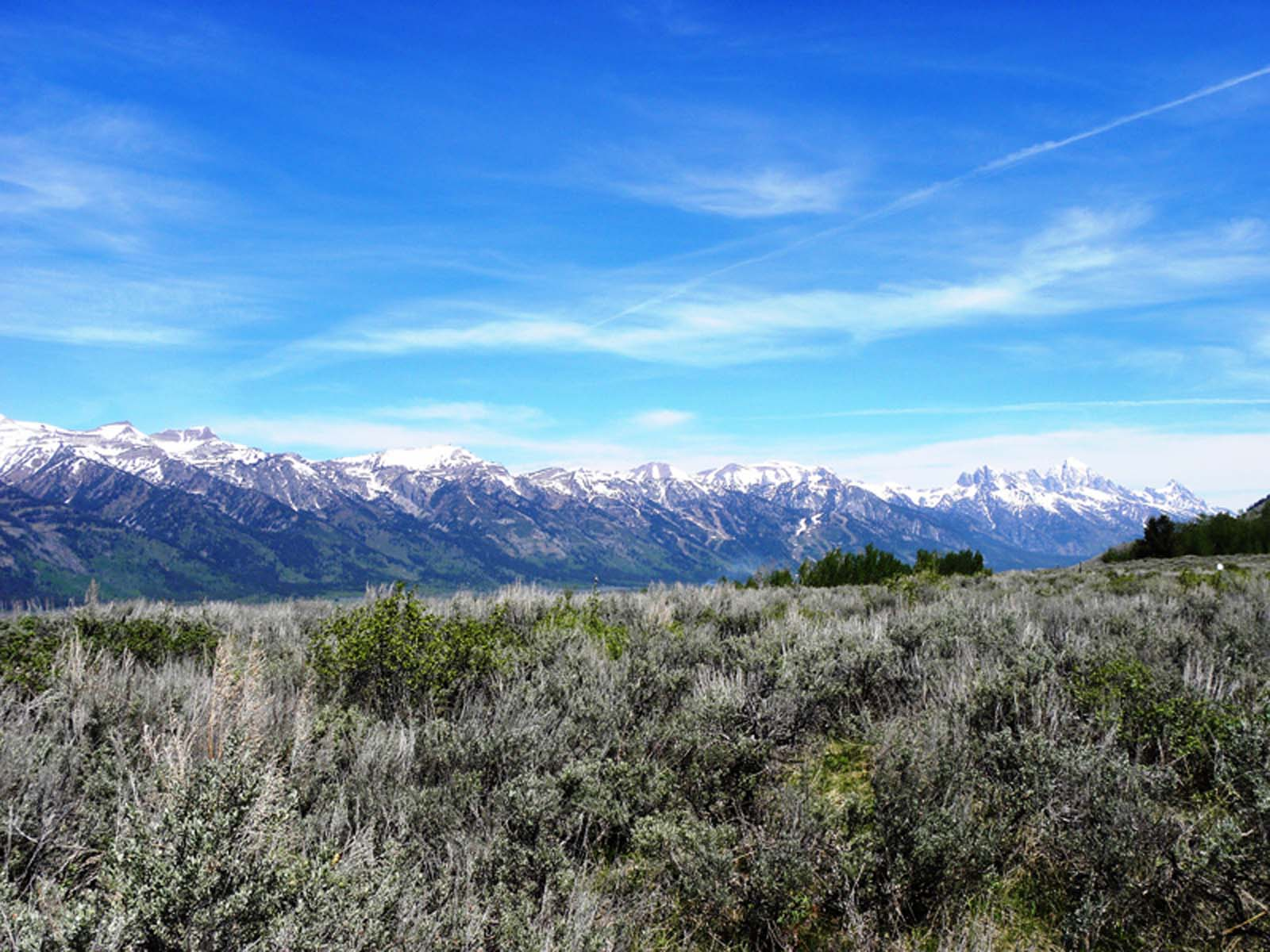 sales property at Atop North Gros Ventre