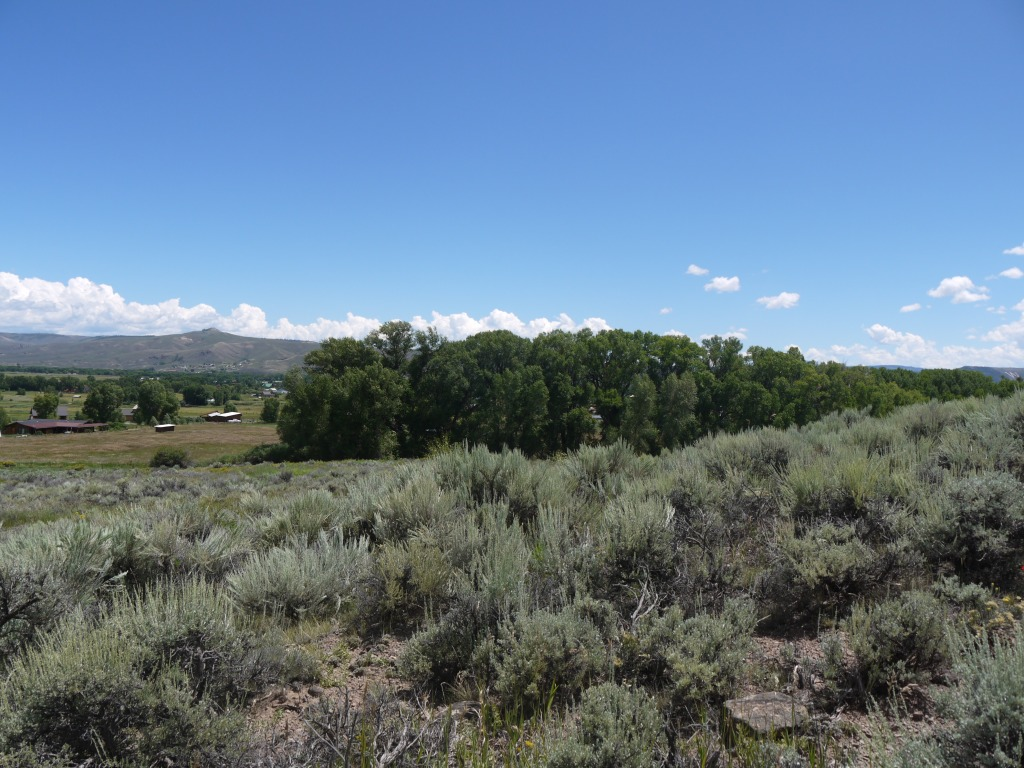 Land for Sale at 896 Seneca Drive Ohio Meadows Gunnison, Colorado 81230 United States