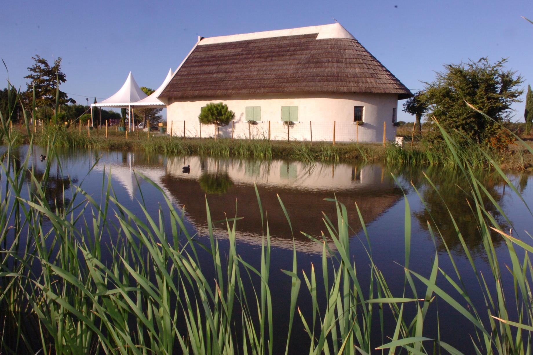Single Family Home for Sale at Domaine typiquement camarguais à proximité de tout ! Other Languedoc-Roussillon, Languedoc-Roussillon France