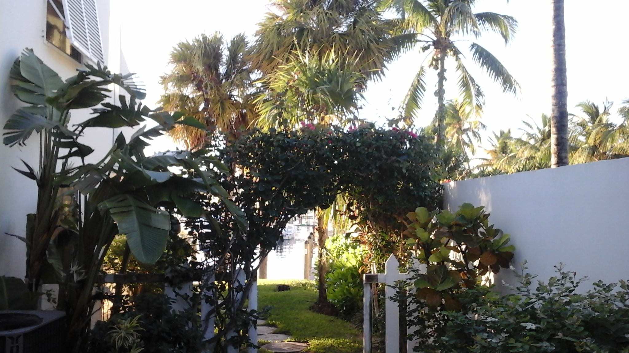 Additional photo for property listing at #2401 Royal Palm Royal Palm, Treasure Cay, 阿巴科 巴哈马