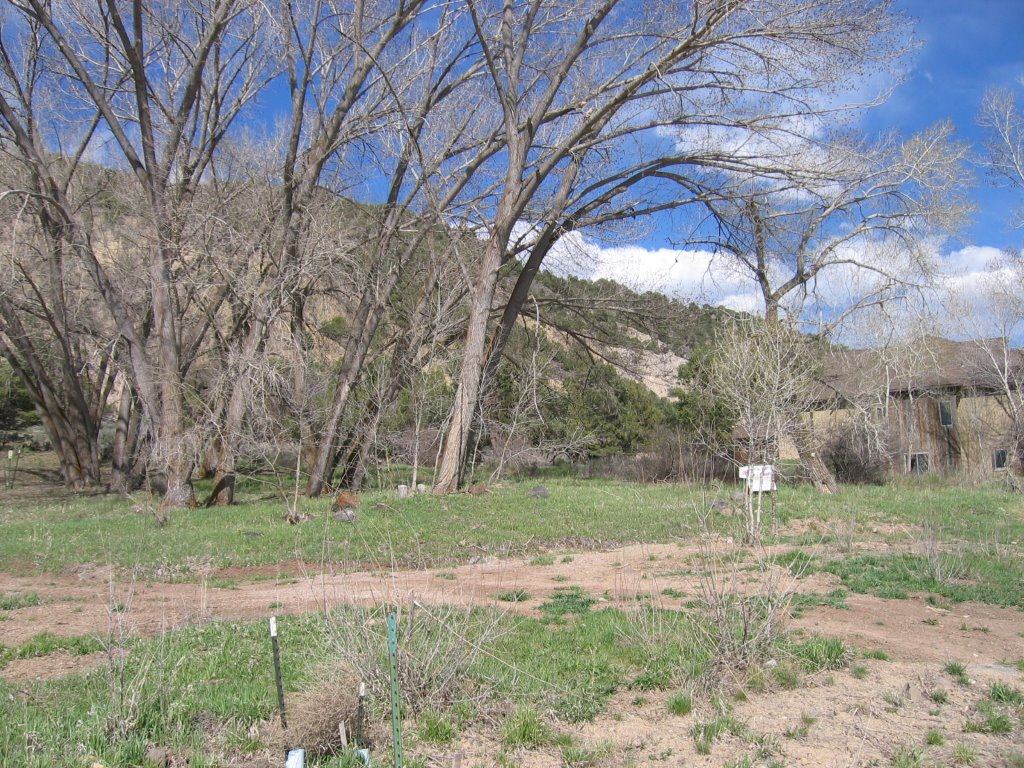 Terrain pour l Vente à Cerise Ranch Lot 38 24 Larkspur Drive Carbondale, Colorado 81623 États-Unis